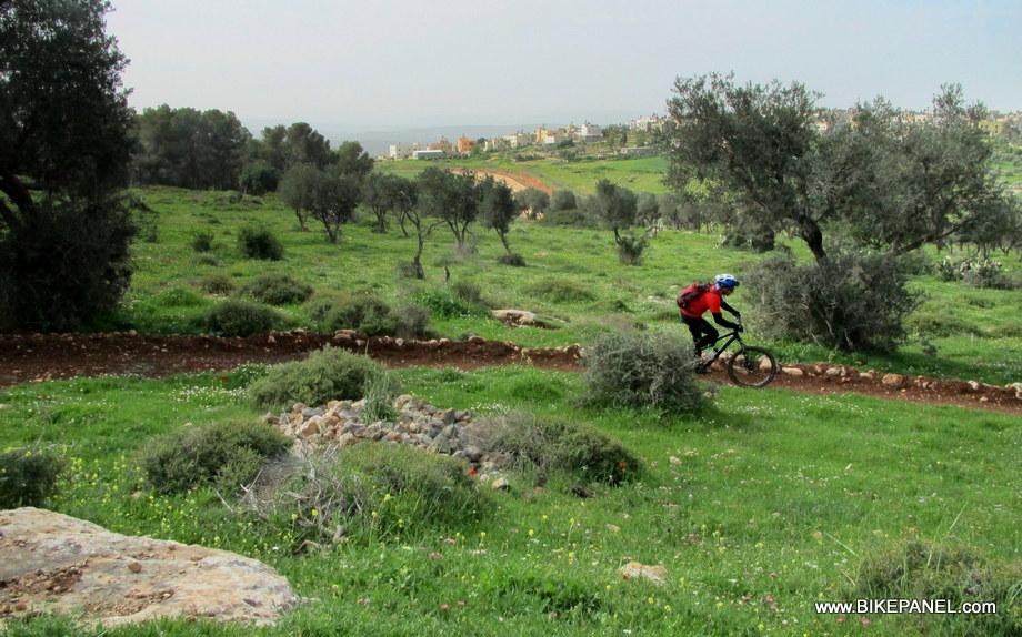 1-Gilboa 045