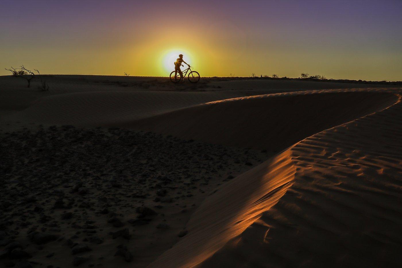עונת המדבר